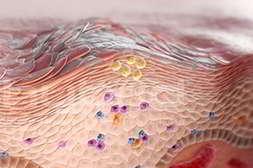 Псорикс вырабатывает новые клетки