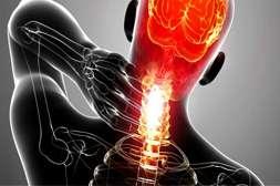 Состав Синергеля усиливает кровоток в больном суставе.